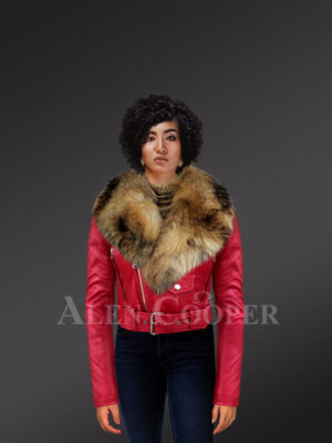 Women's Short Length Moto Jacket With Fur in Burnt Red New with Model